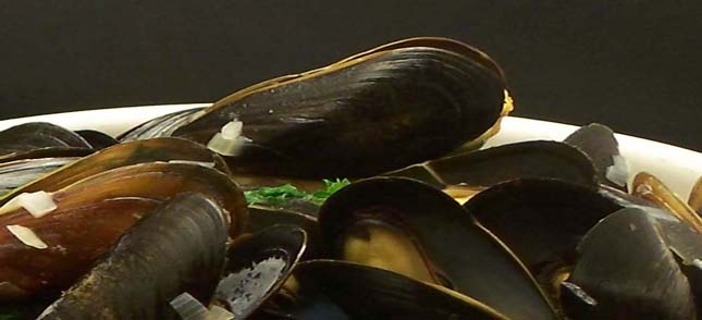 French_Mussels