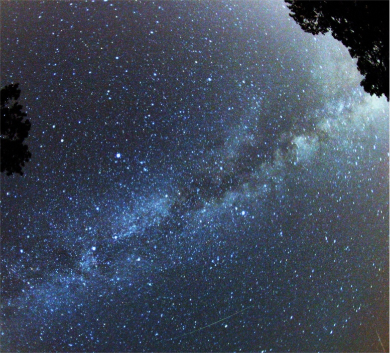 Perseid_Meteor