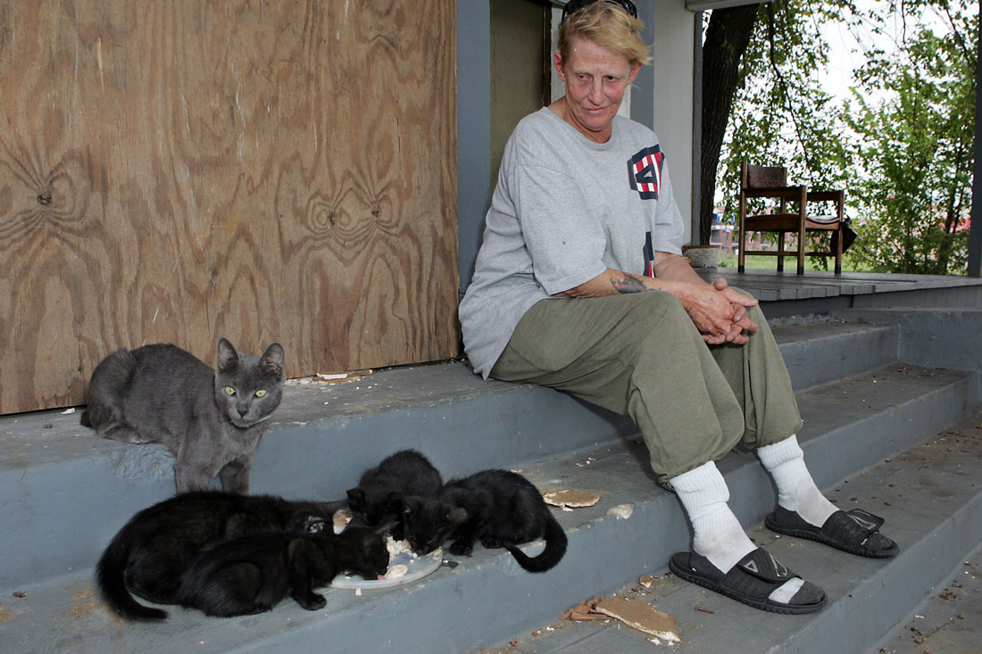 """Young: """"I don't know what will happen to these cats if I have to leave."""" Lee Chastain"""