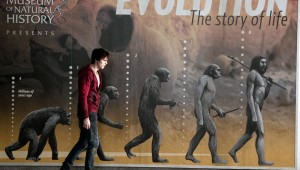 Nicholas Hoult ponders his place in Darwinian theory in Warm Bodies.