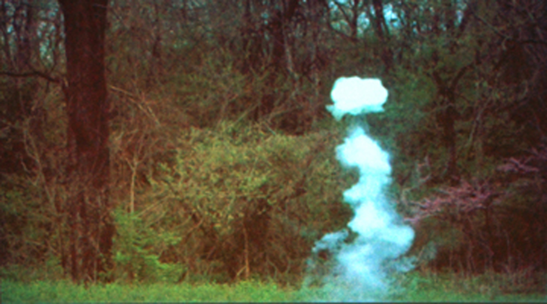 "Austin Stewart's ""Roadside Seed Bomb"""