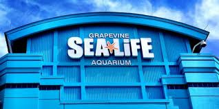 Sea Life Grapevine Aquarium