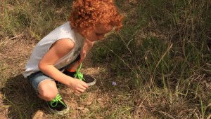 A KID DISCOVERS A WILDFLOWER (photo by Chris Emory)