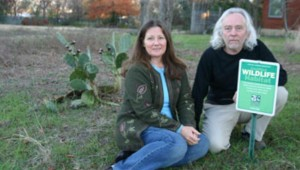 DEBORA AND DON YOUNG ARE THE PROUD PARENTS OF A NATIVE PRAIRIE YARD. (jeff prince file photo from 2006)