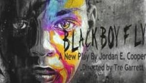 blackboyfly