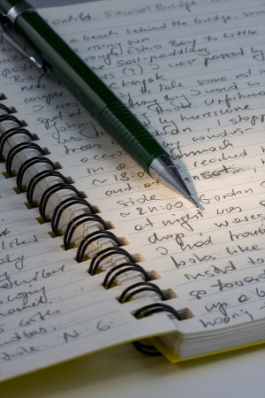journalwriting