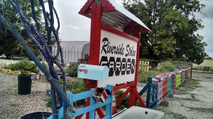 "After thieves made off with supplies for the community garden, the Riverside Arts District just turned it into part of the area's ""growing"" charm.  Gayle Reaves"