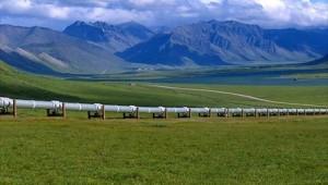 alaska-oil-pipeline_3339