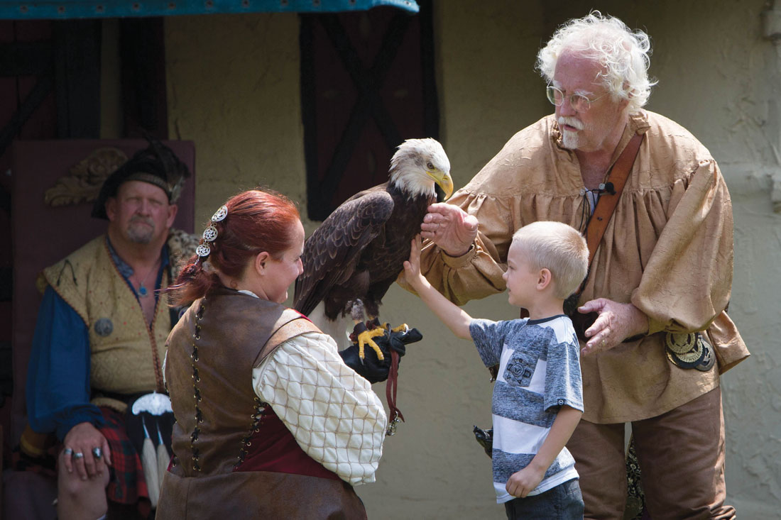 Birds Of Prey Show Bald Eagle W Kid From Audience Fort Worth Weekly