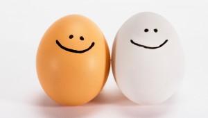 Eggs-78778649