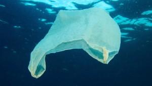 plastic-bags-186312235