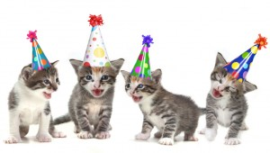 birthday-cats-153522225