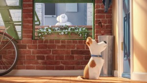 "Max waits for his owner's return while Gidget spies on him from afar in ""The Secret Life of Pets."""