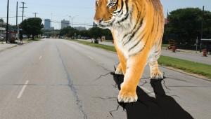Tiger-no-mast