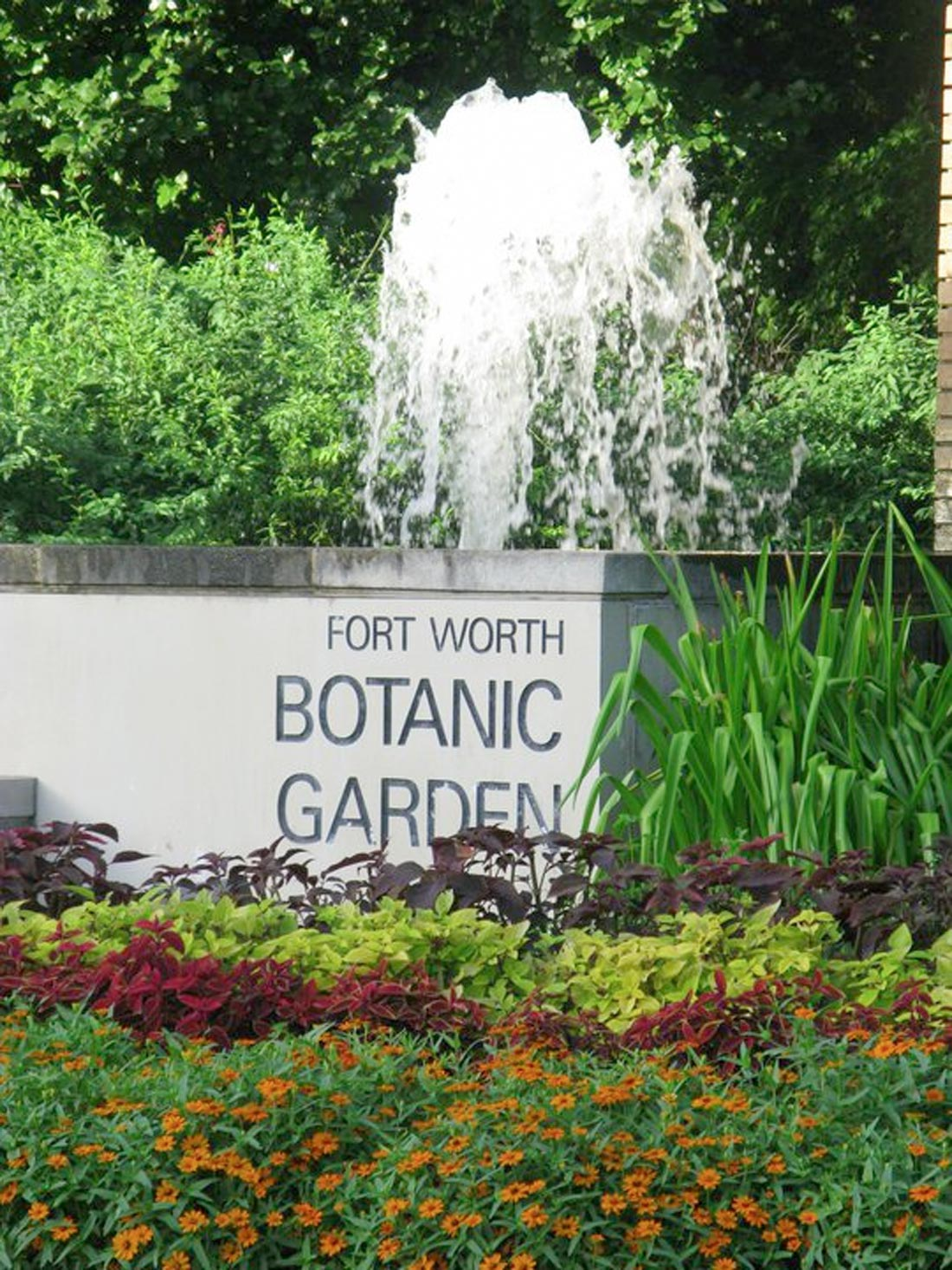 A Recent Study Shows The Beloved Fort Worth Botanic Garden Needs A  Transfusion Of About $15 Million To Keep It From Turning Into A  Post Apocalyptic Black ...
